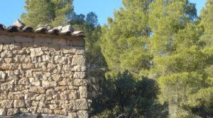 Foto de Masía en Valdeltormo con piedra