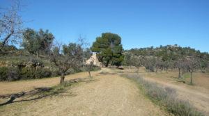 Vendemos Olivar en Calaceite con masía típica tradicional con olivos y almendros por 60.000€