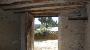 Detalle de Olivar en Calaceite con masía típica tradicional con buen acceso por 60.000€