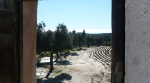 Olivar en Calaceite con masía típica tradicional en oferta con buen acceso