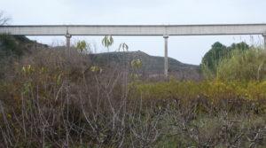 Finca en La Huerta de Caspe para vender con cerezos por 40.000€