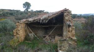 Foto de Finca en La Huerta de Caspe con olivos