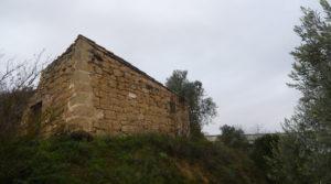 Vendemos Finca en La Huerta de Caspe con olivos por 40.000€