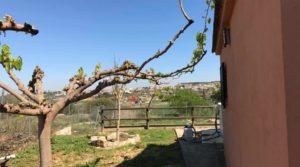 Chalet en Caspe en oferta con huerto por 195.000€