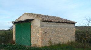 Foto de Finca de regadío en Caspe en venta con regadío