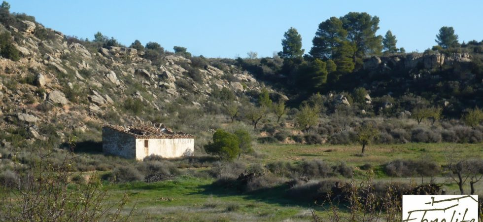 Esplendida finca de regadío legal en Caspe