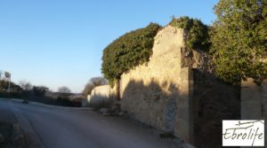 Detalle de Huerto y Masía de dos plantas en Maella con electricidad por 18.000€