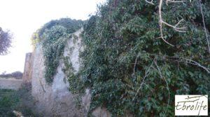 Foto de Huerto y Masía de dos plantas en Maella con desagüe