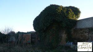 Huerto y Masía de dos plantas en Maella en venta con desagüe por 18.000€