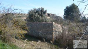 Finca en la huerta de Caspe con masía de piedra. a buen precio con ciruelos