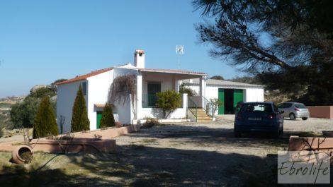 Casa de campo en Maella con finca de frutales y olivos