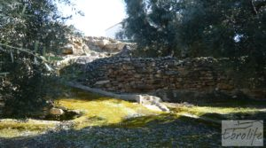 Casa de campo en Maella con finca de frutales y olivos a buen precio con olivos por 97.000€