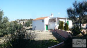 Casa de campo en Maella con finca de frutales y olivos para vender con olivos por 97.000€