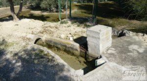 Se vende Casa de campo en Maella con finca de frutales y olivos con olivos