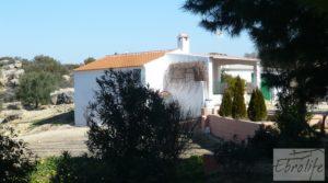 Casa de campo en Maella con finca de frutales y olivos a buen precio con arboles frutales