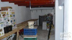 Casa de campo en Maella con finca de frutales y olivos en oferta con olivos