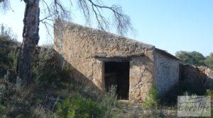 Se vende Finca de olivos con masía de piedra en Fabara con variedad tradicional de gran calidad por 18.000€