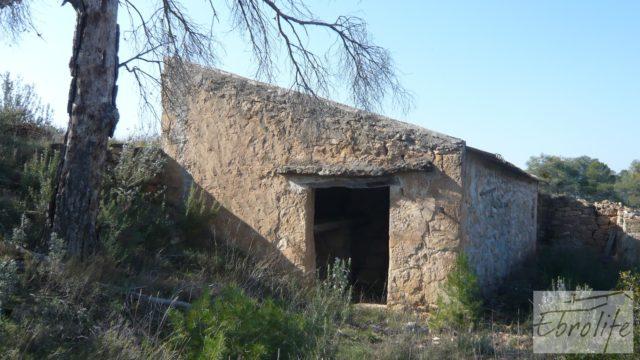 Finca de olivos con masía de piedra en Fabara