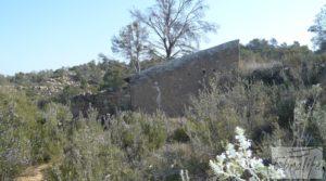 Detalle de Finca de olivos con masía de piedra en Fabara con variedad tradicional de gran calidad por 18.000€