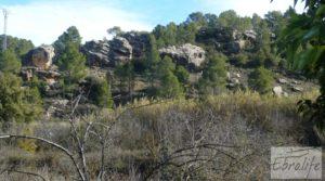 Vendemos Huerta en Torre del Compte con muchas posibilidades. con agua abundante de riego por 49.000€
