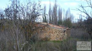 Huerta en Torre del Compte con muchas posibilidades. a buen precio con agua abundante de riego