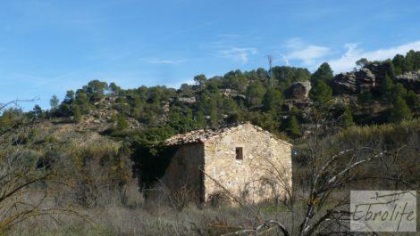 Huerta en Torre del Compte con muchas posibilidades.