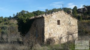 Detalle de Huerta en Torre del Compte con muchas posibilidades. con agua abundante de riego por 49.000€