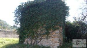 Huerta en Torre del Compte con muchas posibilidades. a buen precio con agua abundante de riego por 49.000€