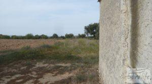 Olivar con masía rústica en Maella. para vender con olivar por 22.000€