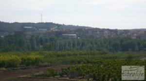Se vende Chalet y Naves en Fabara. Buen acceso y estupendas vistas. con buen acceso por 65.000€