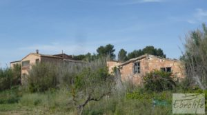 Chalet y Naves en Fabara. Buen acceso y estupendas vistas. a buen precio con buen acceso por 65.000€