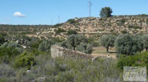 Olivar con masía típica en Maella ♘☼❀☺ en venta por 19.000€