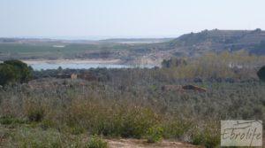 Foto de Espectacular finca de 12 hectáreas en Caspe. en venta con regadío por 245.000€