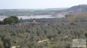 Foto de Espectacular finca de 12 hectáreas en Caspe. en venta con regadío