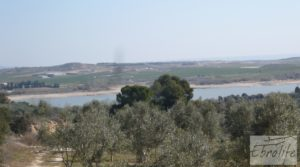 Detalle de Espectacular finca de 12 hectáreas en Caspe. con regadío