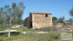 Espectacular finca de 12 hectáreas en Caspe. para vender con regadío por 245.000€