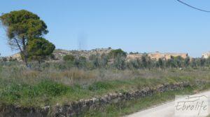 Espectacular finca de 12 hectáreas en Caspe. en venta con regadío por 245.000€
