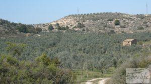 Espectacular finca de 12 hectáreas en Caspe. para vender con regadío
