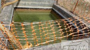 Finca de arboles frutales y olivos en Maella para vender con piscina por 49.900€