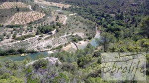 Finca de olivos autóctonos en Calaceite a buen precio con privacidad por 35.000€