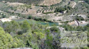 Finca de olivos autóctonos en Calaceite en oferta con tranquilidad por 35.000€