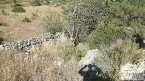 Detalle de Finca rodeada de bosques en Batea con regadío