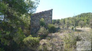 Detalle de Finca rodeada de bosques en Batea con regadío por 70.000€