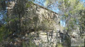 Foto de Finca rodeada de bosques en Batea en venta con regadío por 70.000€