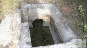 Foto de Olivar en la huerta de Caspe. con regadío por 10.000€