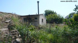 Foto de Masicos en Caspe con frutales por 24.000€