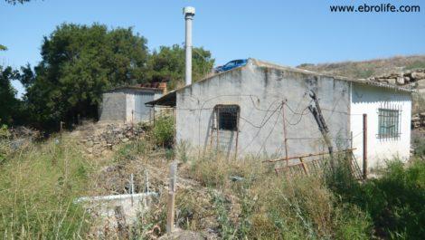 Masicos en Caspe