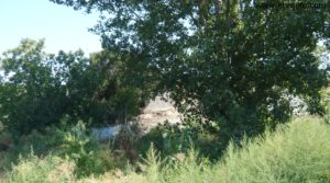 Vendemos Masicos en Caspe con huerto