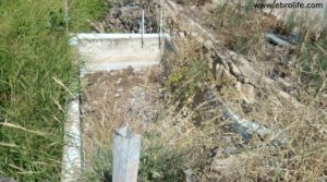 Masicos en Caspe para vender con huerto
