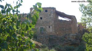 Torre en la Zaragozeta Caspe en oferta con olivos por 120.000€